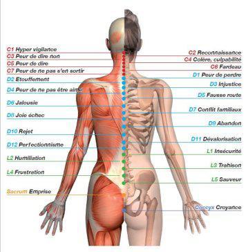 curăța corpul doare articulațiile meniscus ruptură tratament genunchi Preț